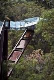Tree Walk Bridge