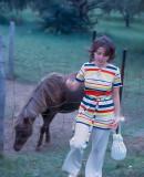 Visiting the donkey