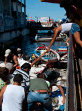The transaction - fish market in Manaus