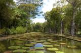 Sir Seewoosagur Ramgoolam Botanic Gardens