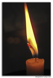 Candlewick