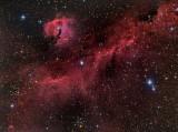 IC-2177 & NGC 2327 The Seagull Nebula / The Eagle Nebula