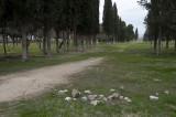 Hierapolis March 2011 4993.jpg