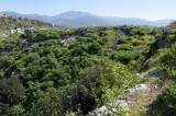 Xanthos March 2011 5176.jpg