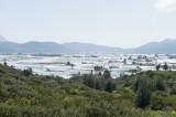 Xanthos March 2011 5224.jpg