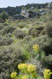 Xanthos March 2011 5248.jpg