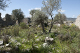 Xanthos March 2011 5259.jpg