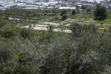 Xanthos March 2011 5281.jpg
