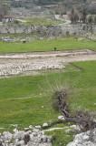 Tlos March 2011 5556.jpg