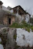 Kash March 2011 6133.jpg