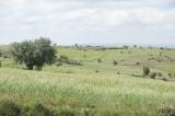 Amasya june 2011 7743.jpg