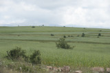 Amasya june 2011 7752.jpg