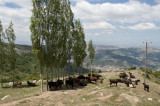 Amasya june 2011 7777.jpg