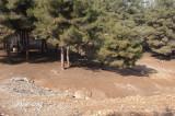 Gaziantep December 2011  2189.jpg