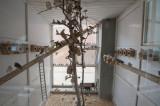Gaziantep December 2011  2193.jpg