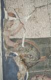 Antakya Museum December 2011 2563.jpg
