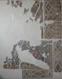 Antakya Museum December 2011 2586.jpg