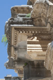 Aspendos march 2012 4642.jpg