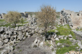Perge march 2012 3830.jpg