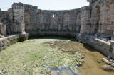 Perge march 2012 3867.jpg