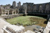 Perge march 2012 3868.jpg
