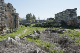 Perge march 2012 3876.jpg
