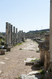 Perge march 2012 3945.jpg