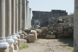 Perge march 2012 3966.jpg