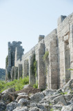 Perge march 2012 3968.jpg