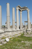 Perge march 2012 3997.jpg
