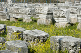 Perge march 2012 4054.jpg