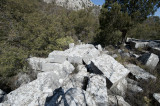 Termessos march 2012 3559.jpg