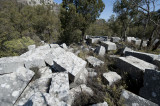 Termessos march 2012 3560.jpg