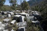 Termessos march 2012 3564.jpg