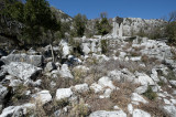 Termessos march 2012 3571.jpg