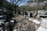 Termessos march 2012 3572.jpg