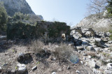 Termessos march 2012 3582.jpg
