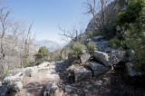 Termessos march 2012 3587.jpg