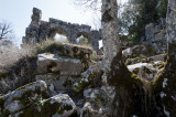 Termessos march 2012 3589.jpg