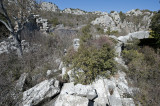 Termessos march 2012 3593.jpg