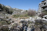 Termessos march 2012 3596.jpg