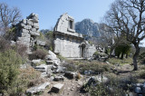 Termessos march 2012 3606.jpg