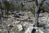 Termessos march 2012 3619.jpg