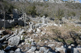 Termessos march 2012 3624.jpg