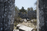 Termessos march 2012 3705.jpg