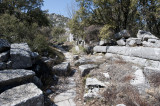 Termessos march 2012 3717.jpg