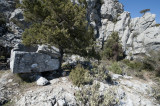 Termessos march 2012 3730.jpg