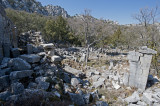 Termessos march 2012 3742.jpg