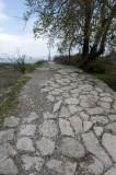 Limyra march 2012 5222.jpg