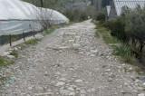 Limyra march 2012 5227.jpg